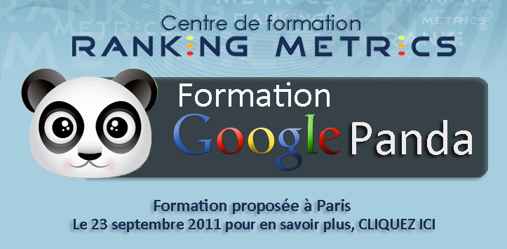 Formation Panda referencement Google