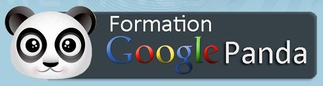 Formation algorithme Google Panda